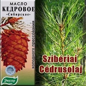 Szibériai Cédrusolaj